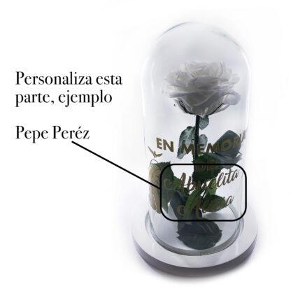 Rosa Blanca preservada personalizada 2